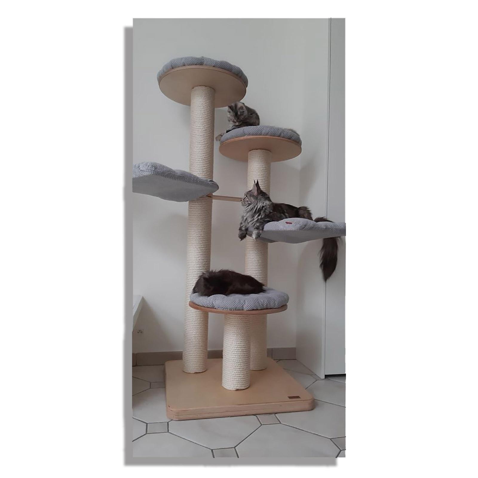 tiragraffi per gatti EX-7